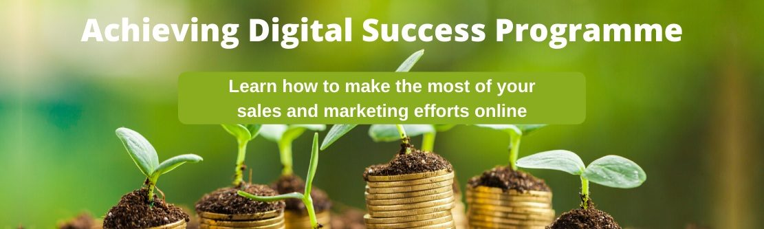 Achieving digital success programme