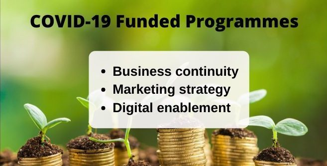 Marketing agency Auckland offering COVID-19 funded programmes